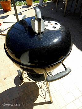 Cuisse de canard en marinade au barbecue Weber : Recettes à